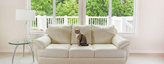 quels sont les droits et obligations lors d 39 une location. Black Bedroom Furniture Sets. Home Design Ideas