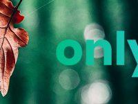 Avis OnlyOne