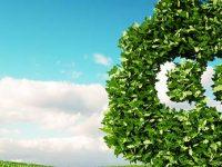 Compensation carbone CO2