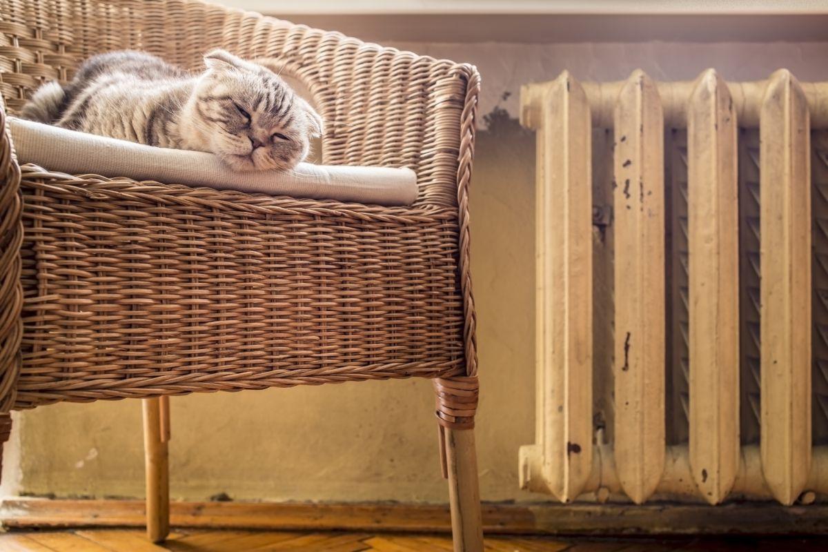gaz comparer les tarifs des fournisseurs de gaz. Black Bedroom Furniture Sets. Home Design Ideas
