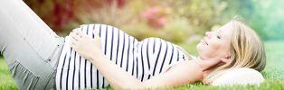trimestres retraite grossesse