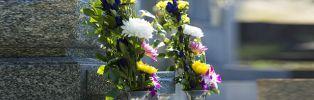 reprise de concession funéraire